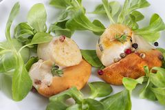 Pan-fried scallops Royalty Free Stock Photos