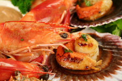 Pan Fried Scallops And Shrimps Stock Images