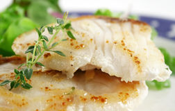 Pan Fried Sea Perch Stock Images