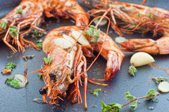 Pan fried shrimp Stock Photography