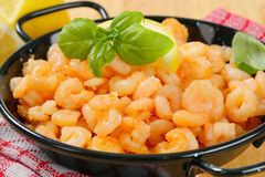 Pan fried shrimps Stock Images