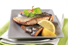 Pan fried trout fillets Royalty Free Stock Photo
