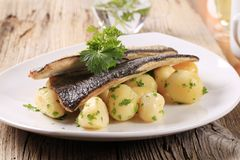 Pan fried trout fillets with potatoes Royalty Free Stock Photo