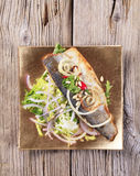 Pan fried trout and green salad Royalty Free Stock Photography