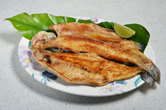 Pan fried trout Royalty Free Stock Photography