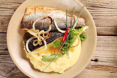 Pan fried trout with mashed potato Stock Photos