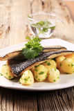Pan fried trout Royalty Free Stock Images