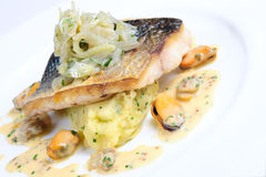 Pan-fried wild sea bass with fennel, mash herbs Stock Image