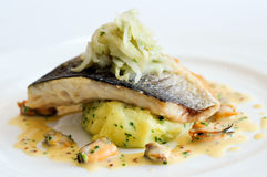 Pan-fried wild sea bass with fennel, mash herbs Royalty Free Stock Images