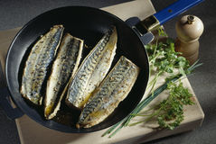Pan-frying mackerel fillets Stock Photo