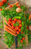 Pan full of vegetables like carrots, tomatoes, pepperoni, green salad, onion on a canvas.  Stock Photography