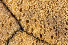 Pan hecho en casa libre del gluten Fotografía de archivo