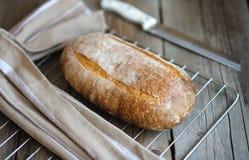 Pan hecho en casa recientemente cocido en fondo de madera oscuro rústico Imagen de archivo