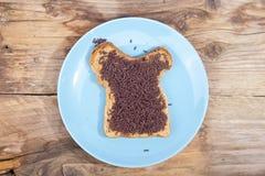 Pan holandés típico con el hagelslag del chocolate fotos de archivo libres de regalías