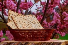 Pan jud foto de archivo libre de regalías