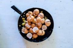 Pan met gebroken eishells na het koken van roereieren met de mens Royalty-vrije Stock Afbeelding