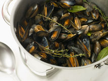 Pan of Moules Mariniere. With a spoon Royalty Free Stock Photo