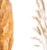 Pan, oídos del trigo y avena en el marco de la forma Visión superior Fotos de archivo