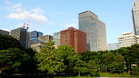 Pan of Office Buildings Surrounded by Trees in Central Tokyo stock video footage