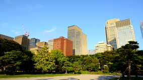 Pan of Office Buildings Surrounded by Trees in Central Tokyo Japan stock video
