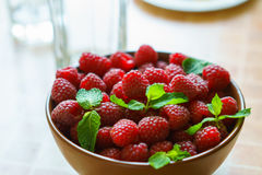 Pan over bowl of raspberries with mint. Stock Images