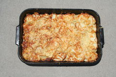 Pan of Potatoes. Baking pan with cheesy augratin potatoes Stock Photo