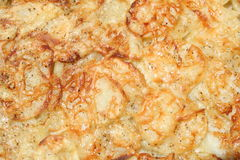 Pan of Potatoes. Baking pan with cheesy augratin potatoes Royalty Free Stock Photo