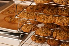 Pan and Rack Tray of Oatmeal Chocolate Chip Cookie Stock Photo
