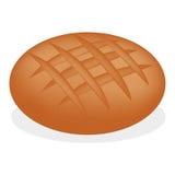 Pan recientemente cocido en el fondo blanco Imagen de archivo libre de regalías