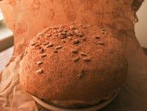 Pan redondo fresco con salvado en fondo marrón Fotos de archivo libres de regalías