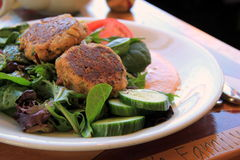 Pan seared crab cakes on leafy green salad Royalty Free Stock Images