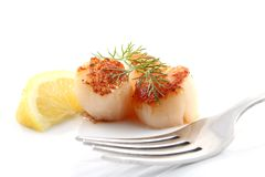 Pan seared scallops with lemon and dill Royalty Free Stock Photo