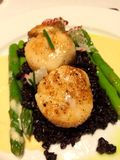 Scallops in black rice stock photo