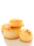 Pan seared sea scallops Royalty Free Stock Images