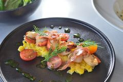 Pan Seared Tasmanian Scallops Royaltyfria Bilder