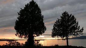 Pan shot of beautiful sunset view at Stanley Park. In Vancouver BC Canada stock video footage