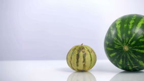 Pan shot from left to right if melon and watermelon on white stock video footage