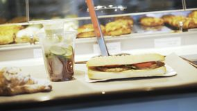Pan shot of a sandwich on a tray in cafe. Close up of a sandwich lying on a tray in cafe with cucumbers and chicken breast. Right to left pan real time close up stock video
