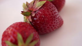 Pan Strawberries Isolated On White Background. Pan Strawberries Isolated On White stock video