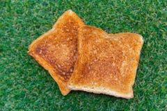 Pan tostado en la hierba verde fotos de archivo