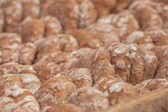 Pan tradicional de la harina de Rye cocinado en sitio durante imágenes de archivo libres de regalías