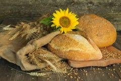 Pan, trigo, espigas de trigo y girasol de la flor en una parte posterior de madera Imagen de archivo libre de regalías