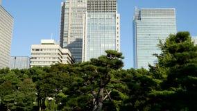 Pan Up av kontorsbyggnader som omges av träd i centrala Tokyo Japan arkivfilmer