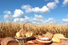 Pan y grano Foto de archivo libre de regalías