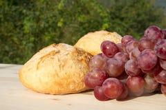 Pan y uvas Imagen de archivo libre de regalías