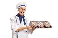 Panadero mayor que sostiene una bandeja con panes recientemente cocidos imágenes de archivo libres de regalías