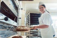 Panadero que sale el pan fresco con la pala del horno imágenes de archivo libres de regalías