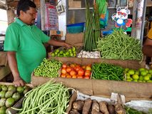 Panadura,斯里兰卡- 2018年5月10日:一个人在地方市场上卖成熟菜 库存照片