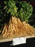 Panais à un marché d'agriculteurs Image libre de droits