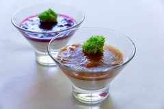 Panakota with berries. apricot in the juice stock photos